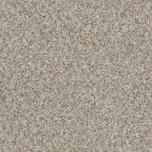 Shaw Floors Value Collections Frosting Net Glacier 00100_E9460