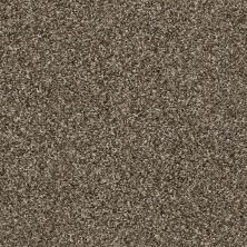 Shaw Floors Value Collections Frosting Net Sweet Tea 00701_E9460