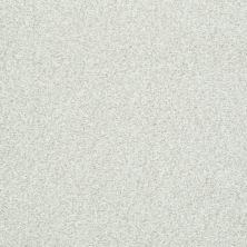 Shaw Floors Value Collections Wild Extract Net Twinkle 00100_E9461