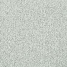 Shaw Floors Value Collections Wild Extract Net Linen 00110_E9461