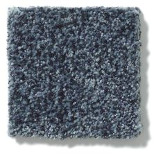Shaw Floors Value Collections Wild Extract Net Night Sail 00402_E9461