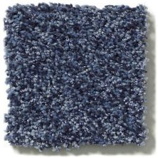 Shaw Floors Value Collections Wild Extract Net Indigo Mood 00421_E9461