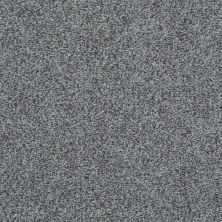 Shaw Floors Value Collections Wild Extract Net Ironstone 00503_E9461