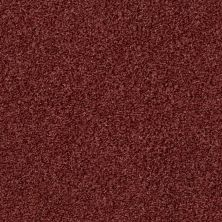 Shaw Floors Value Collections Wild Extract Net Energy 00620_E9461