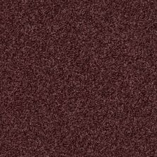 Shaw Floors Value Collections Wild Extract Net Deep Wine 00920_E9461