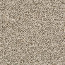 Shaw Floors Value Collections Blending Upwards Coastline 00121_E9465