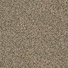Shaw Floors Value Collections Blending Upwards Lioness 00220_E9465
