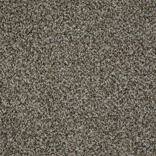 Shaw Floors Value Collections Blending Upwards Griffin 00522_E9465
