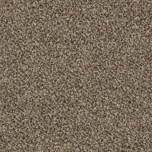 Shaw Floors Value Collections Blending Upwards Quarry 00722_E9465