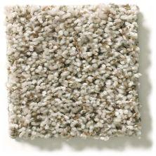 Shaw Floors See Me Sand Swept 00112_E9492