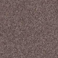Shaw Floors See Me Driftwood 00711_E9492