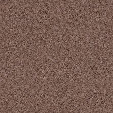 Shaw Floors See Me Acorn 00712_E9492