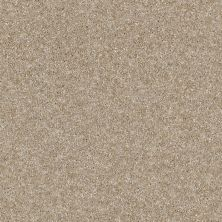 Shaw Floors Simply The Best Luminous Blonde 00111_E9494