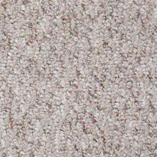 Shaw Floors Value Collections Pembrooke 15′ Net Canyon 00700_E9495