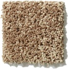 Shaw Floors Hubbell 1 Summer Straw 00205_E9533