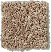 Shaw Floors Hubbell 1 Suede 00700_E9533