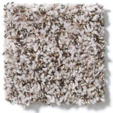 Shaw Floors Hubbell 2 Winter White 00110_E9534