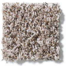 Shaw Floors Hubbell 2 Suede Buff 00111_E9534