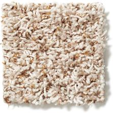 Shaw Floors Hubbell 5 Sand Swept 00100_E9537