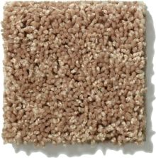 Shaw Floors Hubbell 8 Corn Silk 00215_E9540