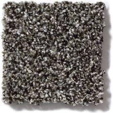 Shaw Floors Hubbell 9 Meteorite 00501_E9541