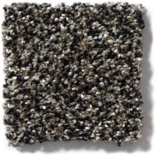 Shaw Floors Hubbell 9 Black Granite 00503_E9541
