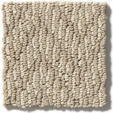 Shaw Floors Hubbell 13 Tortilla 00102_E9545