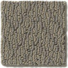 Shaw Floors Hubbell 13 Latte 00704_E9545