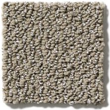 Shaw Floors Hubbell 14 Taupe 00104_E9546