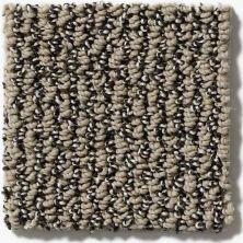 Shaw Floors Hubbell 14 Mocha 00700_E9546