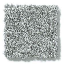 Shaw Floors Hubbell 16 Zen 00300_E9548
