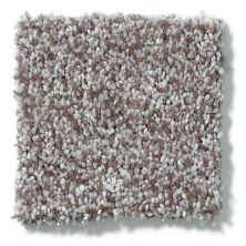 Shaw Floors Hubbell 16 Fleece 00704_E9548