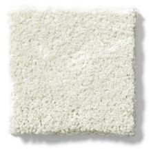 Shaw Floors Hubbell 22 Cotton 00100_E9554