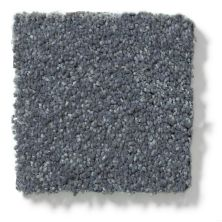 Shaw Floors Hubbell 22 Charcoal 00504_E9554