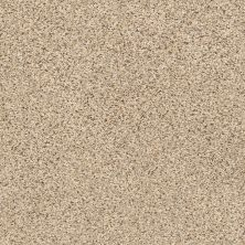 Shaw Floors Elemental Mix II Sand Castle 00174_E9565