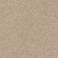 Shaw Floors Foundations Elemental Mix II Twine 00175_E9565