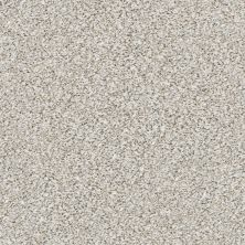 Shaw Floors Elemental Mix II Whitewash 00177_E9565
