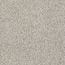 Shaw Floors Elemental Mix II Snowbound 00178_E9565