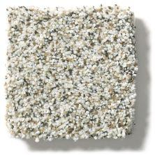 Shaw Floors Foundations Elemental Mix II Snowbound 00178_E9565