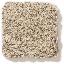 Shaw Floors Foundations Elemental Mix III Sand Castle 00174_E9566