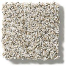 Shaw Floors Foundations Elemental Mix III Silver Lining 00572_E9566