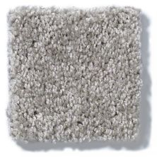 Shaw Floors Hubbell 26 Pewter Solid 00550_E9567