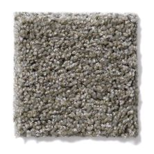 Shaw Floors Hubbell 27 Pewter Tweed 00521_E9568