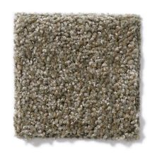 Shaw Floors Hubbell 27 Driftwood Tweed 00721_E9568