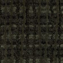 Shaw Floors Value Collections Pure Envy Net Lush 00301_E9580
