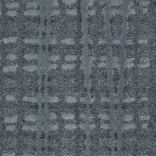 Shaw Floors Value Collections Pure Envy Net Fountain Spray 00402_E9580