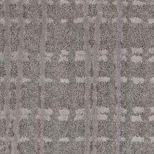 Shaw Floors Value Collections Pure Envy Net Storm 00500_E9580