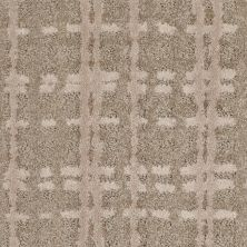 Shaw Floors Value Collections Pure Envy Net Sepia 00700_E9580