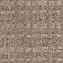 Shaw Floors Value Collections Pure Envy Net Townhouse 00701_E9580