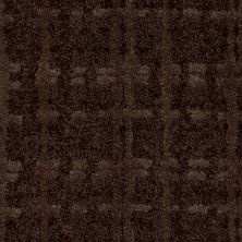 Shaw Floors Value Collections Pure Envy Net Rich Chocolate 00704_E9580
